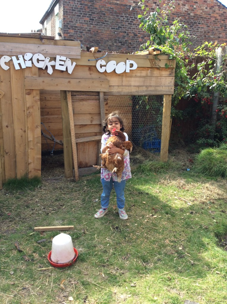 I am now brave enough to hold our chickens