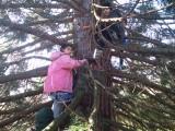 Forest School - Tree Climbing 6