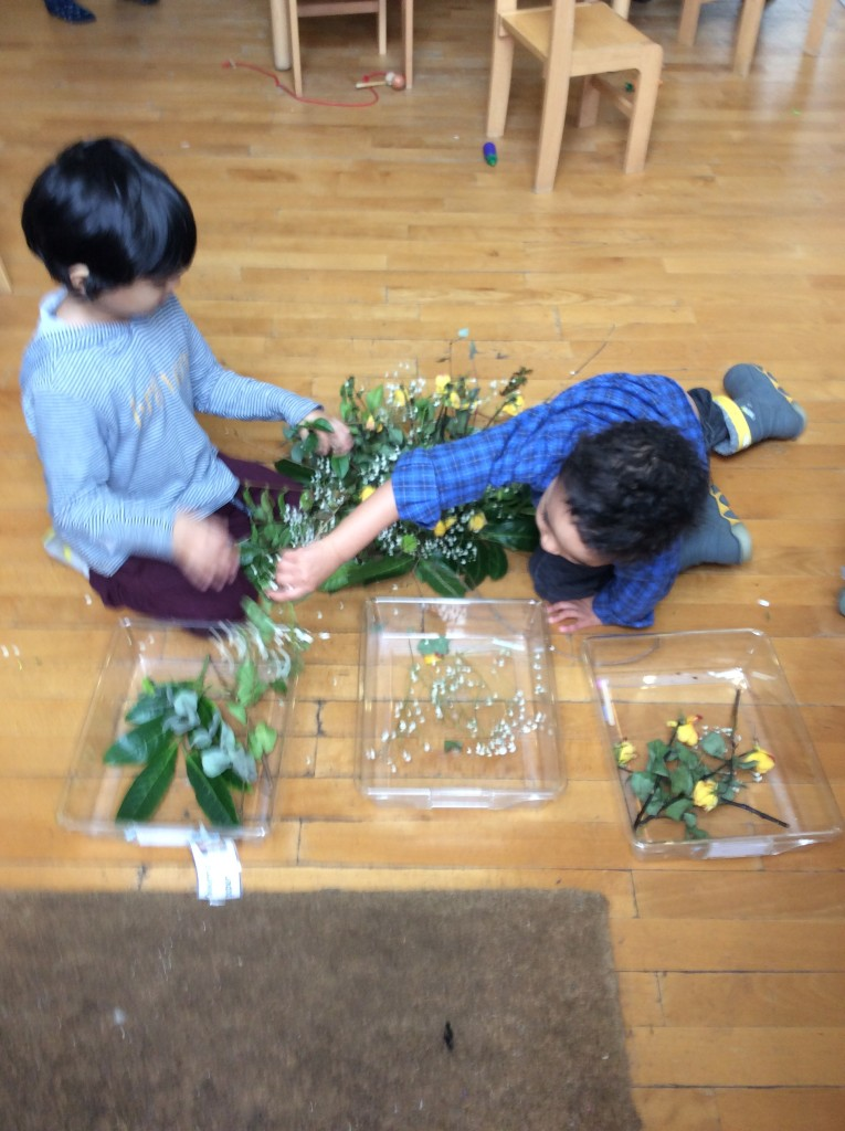 Sorting dried leaves, flowers and roses from a bunch of flowers given to the nursery. These will now go on our nature table.